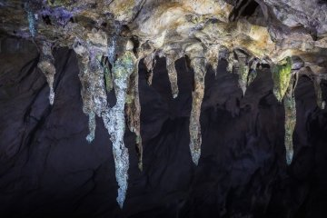 Stalactites grow at a pace of 2 cm (just under an inch) per 250 years; these are the length of a car