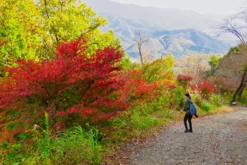 The walk back down Mt. Hodo