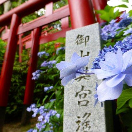 ประตูHiroshima's Hillside Torii