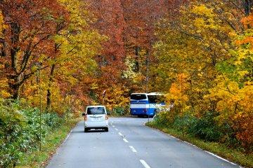 รถบัสพาคุณเดินทางจากเมืองอาโอโมริสู่ทะเลสาบโทวาดะ