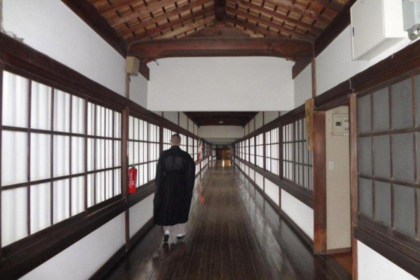 The beautiful, long corridor \