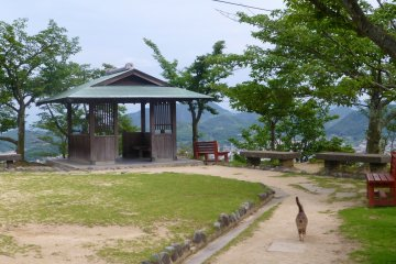 Another viewing point at Senkoji Park