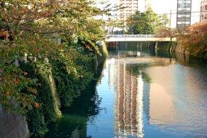 Meguro River (2)