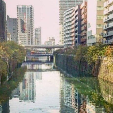 Scenic Walks Around Tokyo