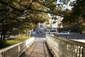 Meguro River (3)