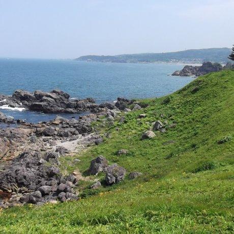 타네사시 해안 산책