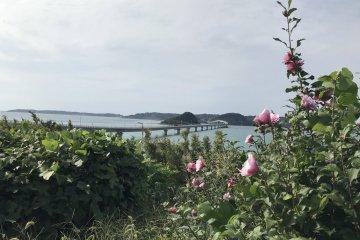 หากคุณกำลังแวะไปชมสะพาน Tsunoshima จุดแวะพักแห่งนี้ตั้งอยู่ไม่ไกลจากที่นั่น