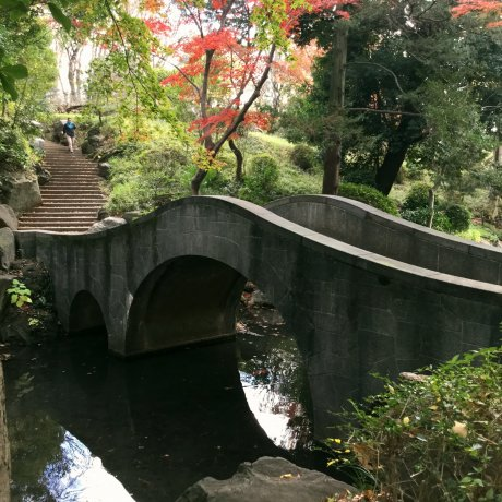 Arisugawa Park in Autumn