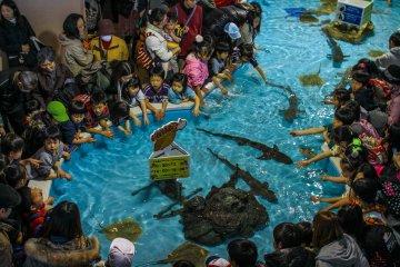 Children enjoying the touch tide pool
