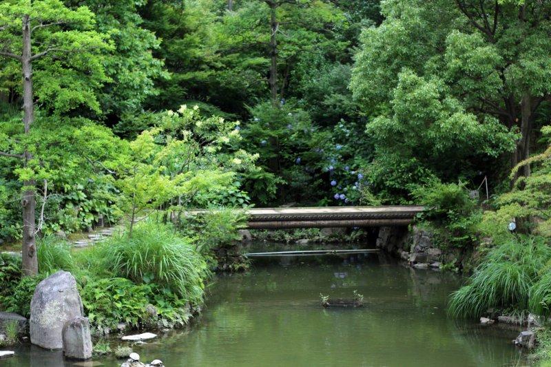 Lush greenery surrounds you at the Kokura Castle Japanese Garden.