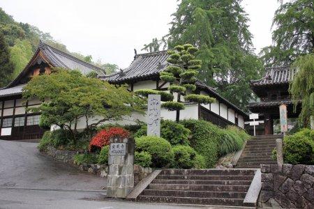 마츠야마 시, 도고의 호곤지