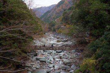 Kazurabashi Bridge in Tokushima