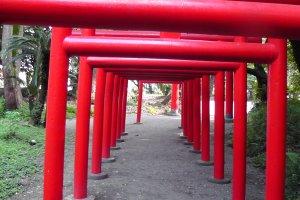 The multiple gateways of the Gosho Inari Shrine