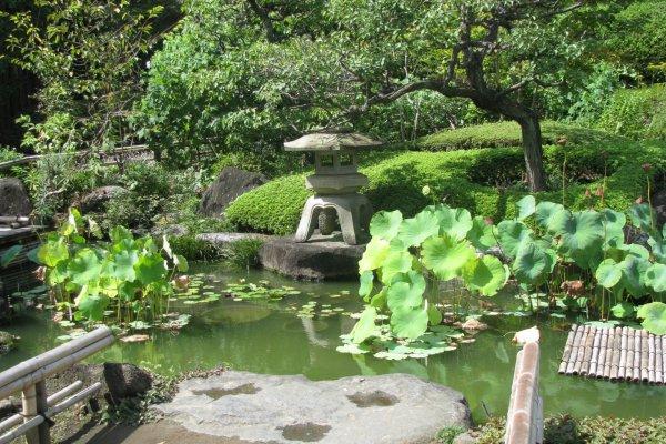 Сад храма Хасэдэра