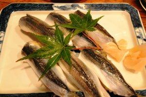 Mamakari (sardine) sushi in Kurashiki