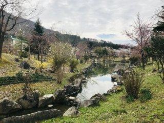 Công viên này trông như một bức tranh mùa xuân