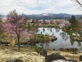Trên đỉnh một vài ngọn núi quanh đây vẫn còn phủ tuyết khi hoa bắt đầu nở