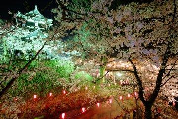 เทศกาลดอกซากุระที่ปราสาททะคะดะ