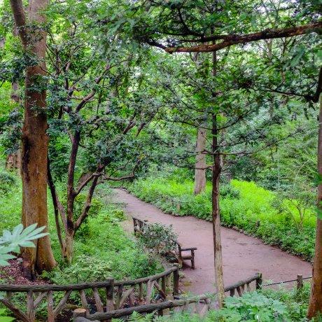 أريسوغاونميا الحديقة التذكارية