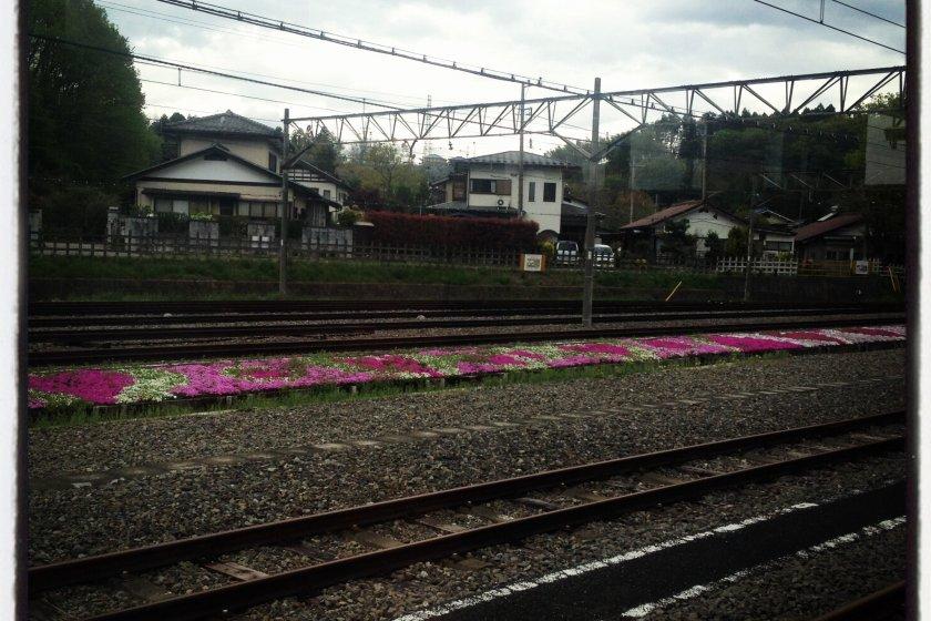 열차에서 본 선로의 풍경!