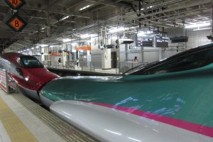 Hayabusa and Super Komachi Shinkansen