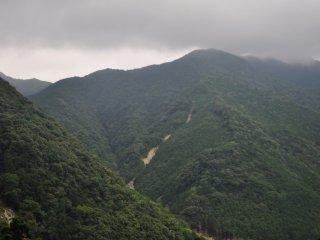 지역을 둘러 싼 산들. 쿠마노의 풍경은 언제나 아름답고 푸르른 산과 숲으로 가득 차 있다.