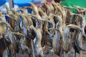 Bạn có muốn thử shioyaki không? Đó là cá tráp nướng muối.