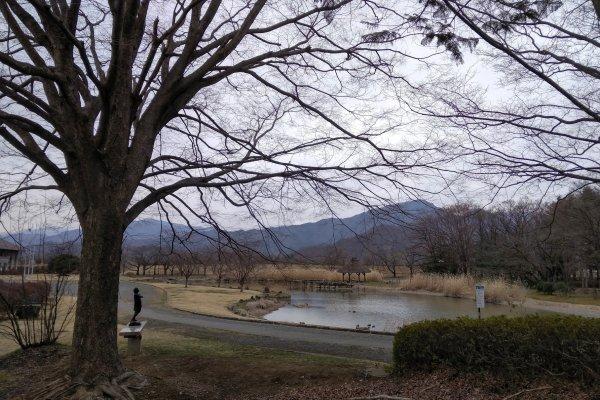 Cảnh công viên cạnh chiến trường