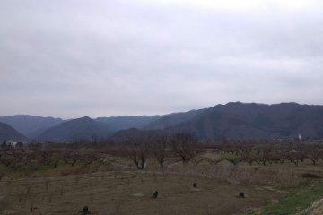 Fertile farmland