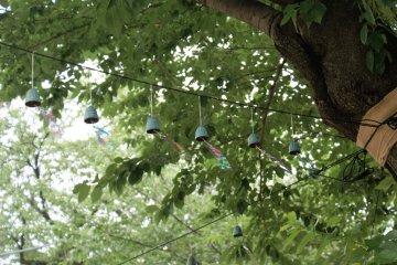 Ikegami Honmonji Wind Chime Festival