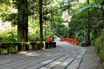 Gunma Power Spot Haruna Shrine