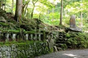 Many markers and small shrines stand among the trees along the path