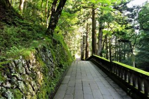 The path is about 700 meters long