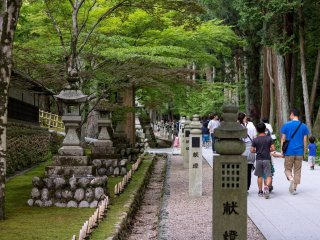 Lanterns, ancient and more modern, line the path to the temple