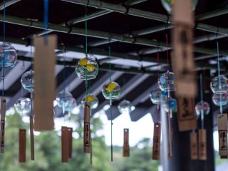Hundreds of wind chimes line the wings of the main temple during summertime