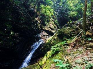 Еще один небольшой водопад и бассейн с тропы, ведущей к Цугоэ