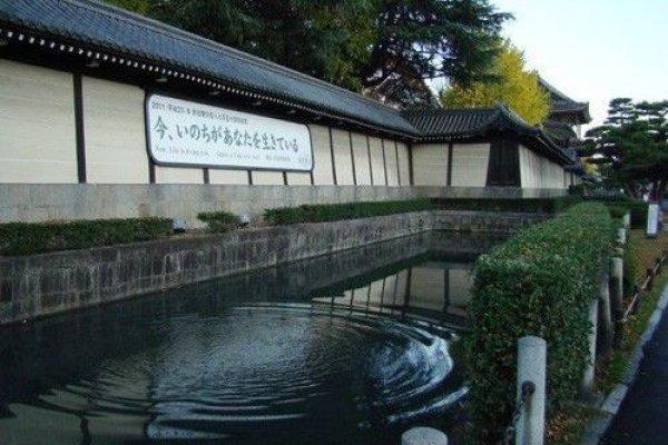东本愿寺内清池