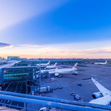 日本への行き方(空港・航空会社)