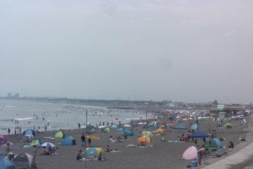 Kuganuma Beach in all its glory