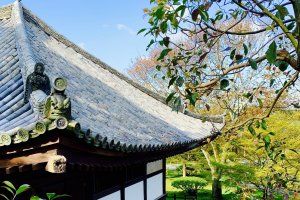 The lovely lines of the Kannon-do roof, viewed from outside the compound.