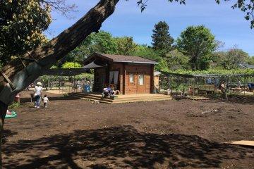 Nerima Children's Forest (Kodomonomori)