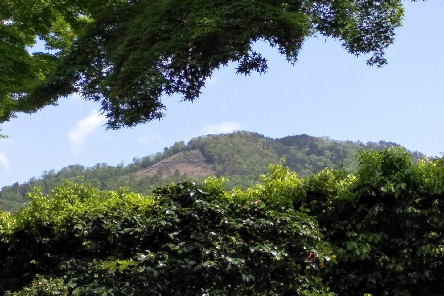 Daimonji from the ground