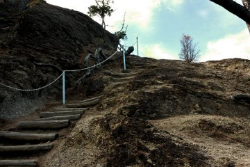 Steps to the viewing platform