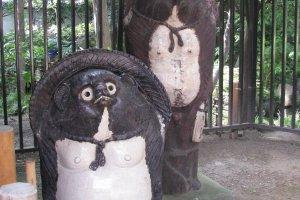 Тануки в шляпках