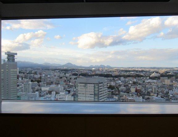 A Bird's Eye View of Sendai