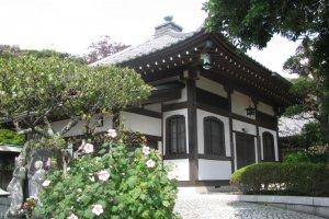 Хасэдэра, Камакура