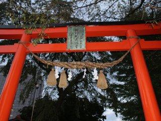 Traditional torii