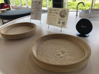 You can pick up the koji rice to feel the texture