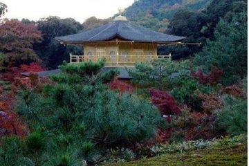 山顶看金阁寺