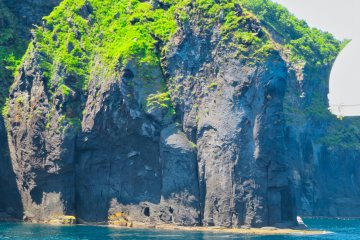 Zo (Elephant) Rock